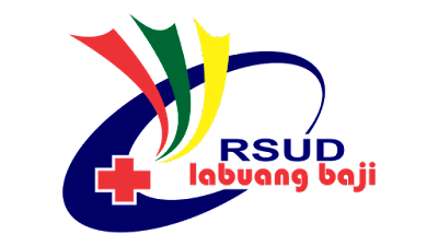 Logo RSUD Labuang Baji Vector Agus91