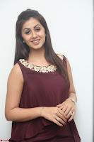 Nikki Galrani in a Brown Shining Sleeveless Gown at Nakshatram music launch ~  Exclusive 096.JPG