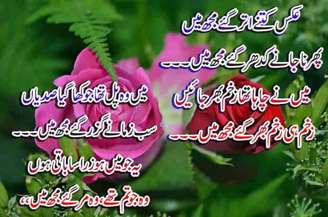 Aks Kitne Utar Gaye Mujh Mein-Urdu Poetry - Love-Sad Shayari Latest-Urdu Shyari 2020