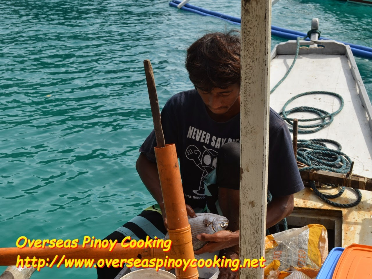 Fish Cleaning by Boat Crew