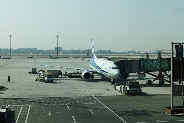 ANA-飛行機