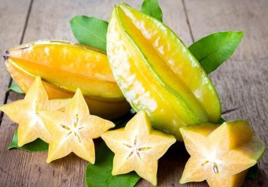 biji benih buah Star fruit 10 biji Riau