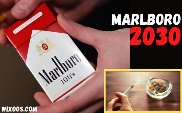 Marlboro boss calls for a 2030 cigarette ban in some countries