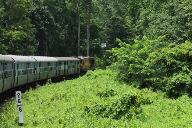 Vivek express train entering Hasimara jungle, Assam, India