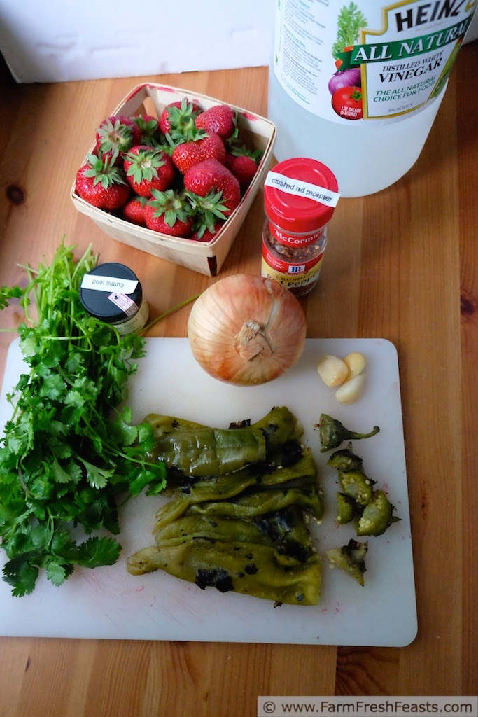 ingredients to make cantina style strawberry salsa