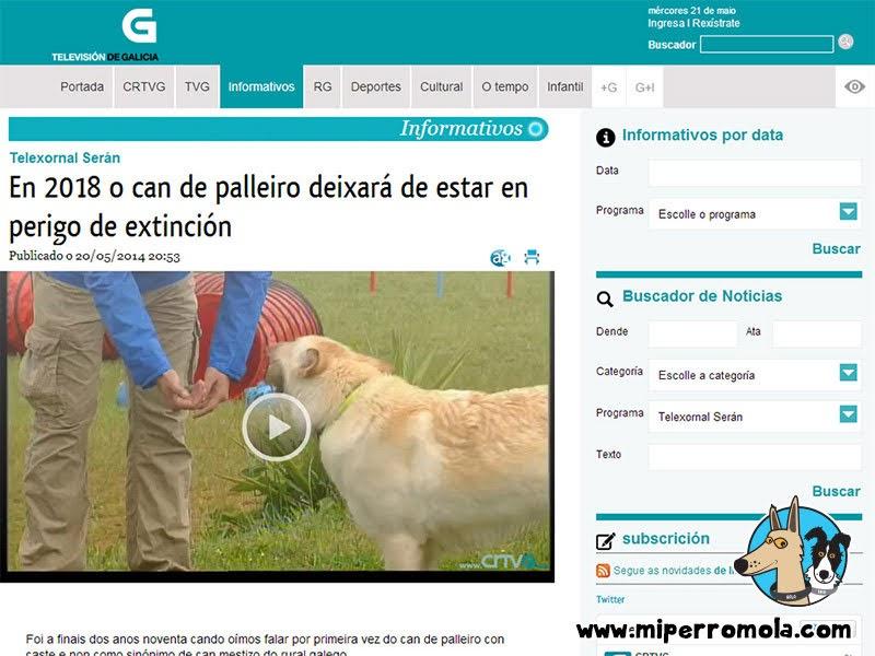 Can de Palleiro en la CRTVG Televisión de Galicia