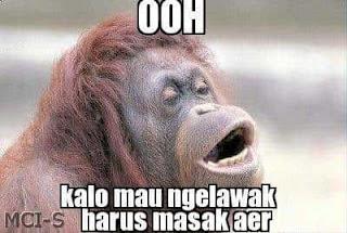 kata lucu monyet