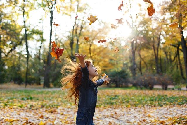 Sonbaharda harika fotoğraflar çekmek için tüm koşullar uygun.