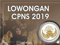 Alur Rekrutmen CPNS 2019, Yang Mau Jadi PNS Wajib Baca !!