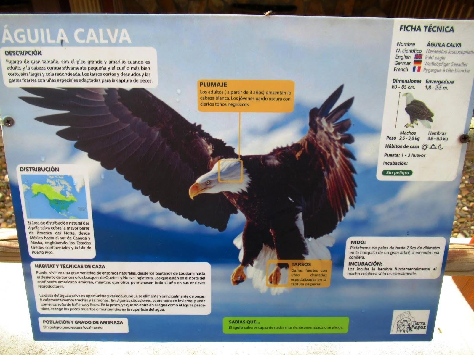 Urbina Vinos Blog: Tierra Rapaz - Parque de Aves en Calahorra (La Rioja)