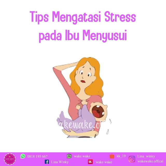 Tips Mengatasi Stress Pada Ibu Menyusui