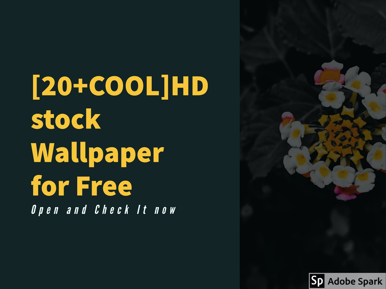 20+COOL ]FREE HD wallpaper for mobile 1920x1080