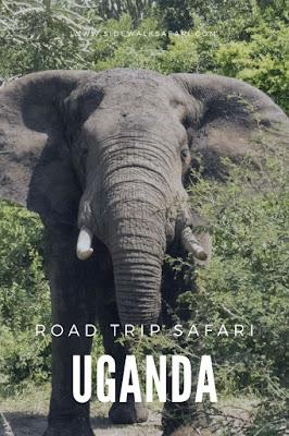 Uganda Road Trip Safari
