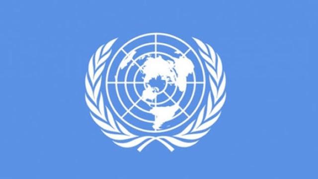 Birleşmiş Milletler Örgüt yapısı içerisinde neler yer almaktadır?