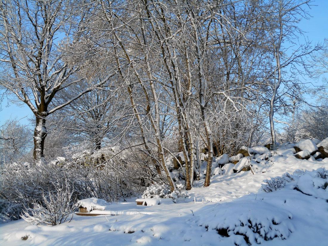 L'orto sotto la neve, 24 febbraio 2017