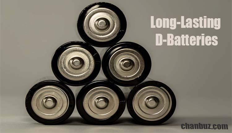 Longest Lasting D Batteries