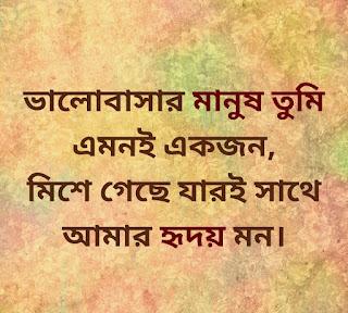 Tumi Amar Jibon Lyrics