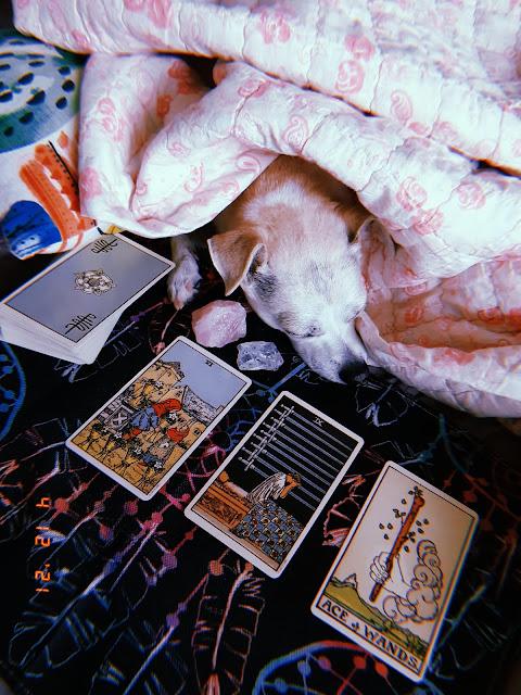 Pisces Tarot Reading