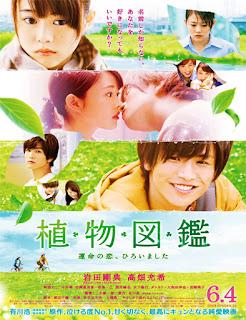 Ver Evergreen Love (Botanical Books)  (2016) película Latino HD
