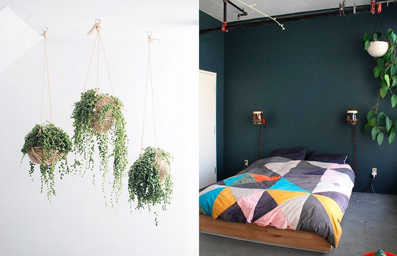 Maneiras de pendurar plantas: no teto