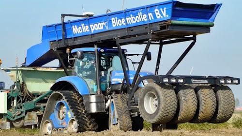 Trator 4 esteiras 4 rodas plantação Tulipas