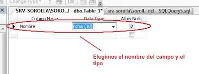 nombre y tipo de campo SQL Server