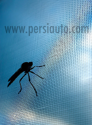 Modelos de mosquiteras
