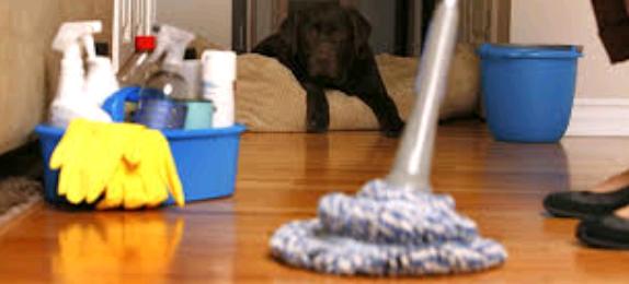 شركة تنظيف منازل بجازان , شركة غسيل منازل بجازان , شركة تنظيف منازل بالبخار بجازان , نظافة المنزل المجال سيرفس للتنظيف , المجال للتنظيف , تنظيف البيت بساعه , تنظيف المطبخ بالصور قبل وبعد , تنظيف المنزل بالساعات جازان , تنظيف منازل , جلي بلاط بجازان , خدمة التنظيف بالساعة , راحة شركات التنظيف جازان , شركة بجازان , تجفيف الموكيت من الماء , شركة تنظيف منازل بجازان , حور جازان شركة , غسيل البيوت في جازان , شركة ترتيب وتنظيف المنازل بجازان , مكتب تنظيف منازل بجازان , شركة رسمية لتنظيف المنازل بجازان , مؤسسة رسمية لتنظيف المنازل بجازان , مين جربت شركات تنظيف المنازل بجازان , تجربتي مع شركة تنظيف منازل بجازان , كم أسعار شركات تنظيف المنازل بجازان , أسعار و أرقام شركات تنظيف المنازل بجازان , شركة تنظيف منازل بجازان , تنظيف منازل بجازان عمالة فليبينية , شركات تنظيف منازل بجازان عمالة فليبينية , شركه تنظيف الاسبلت ف المنزل , غسيل سجاد حي الرحيلي , عمالة تنضيف المنزل بساعه , غسيل الشقق , غسيل الموكيت بالبخار , كلمه صغيره عن يومي لتنظيف المنزل , مين جربت شركات تنظيف المنازل بجازان  , شركات تنظيف منازل , شركة سوبر كلين جازان , عاملات نظافة بجازان , خدمات تنظيف المنازل , شركه تنظيف سجاد بجازان , كم اسعار شركات تنظيف المنازل , شركة تنظيف برابغ