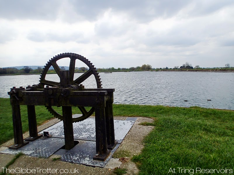 Tring Reservoir Walks