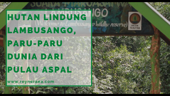 hutan lindung lambusango