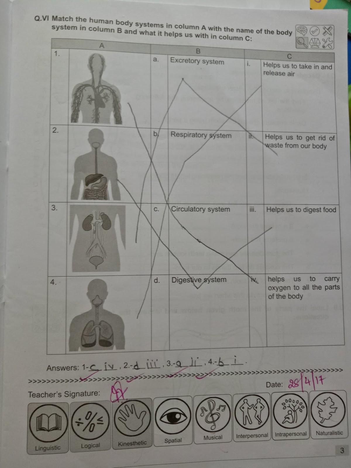 Pis Vadodara Std 4 Evs Human Body Systems Workbook And
