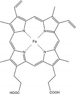 Structure of heme