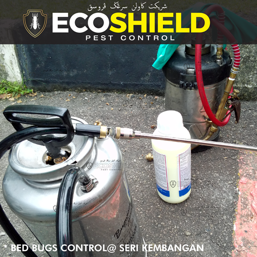Eco Shield Pest Control Malaysia - Bed Bugs Control