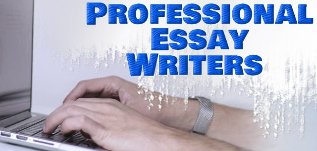 what to look for online essay writing site professional writers