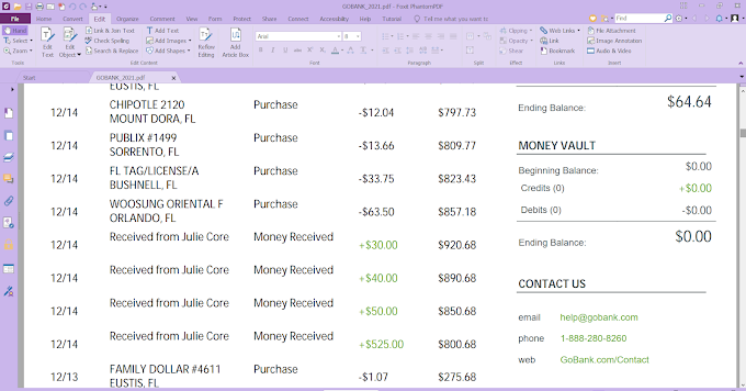 Gobank Statement Editable PDF template 11 pages