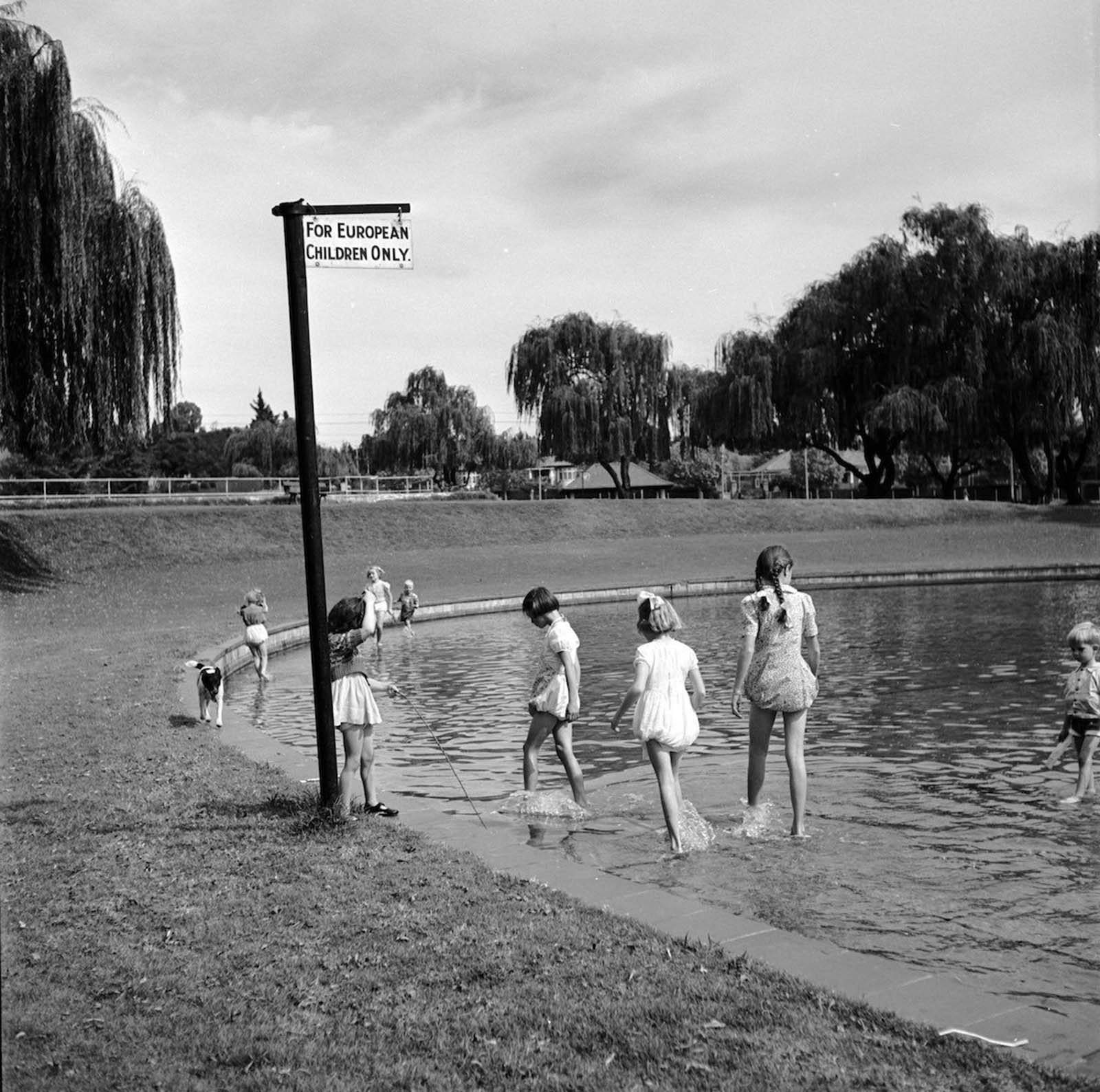 White children paddling in a pond marked by a sign reading