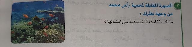نماذج امتحانات اولي ثانوي بالإجابات النموذجية | النبات الطبيعي والحيوان البري في مصر | اجيال الاندلس