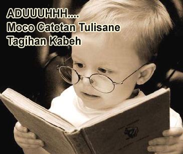 gambar bayi pakai kacamata baca buku lucu