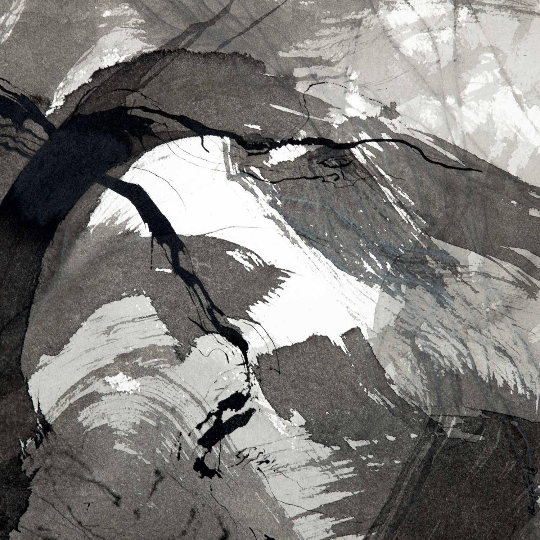 Encre de Chine et lavis sur Arches © Annik Reymond