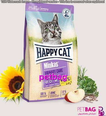 اكل قطط جاف