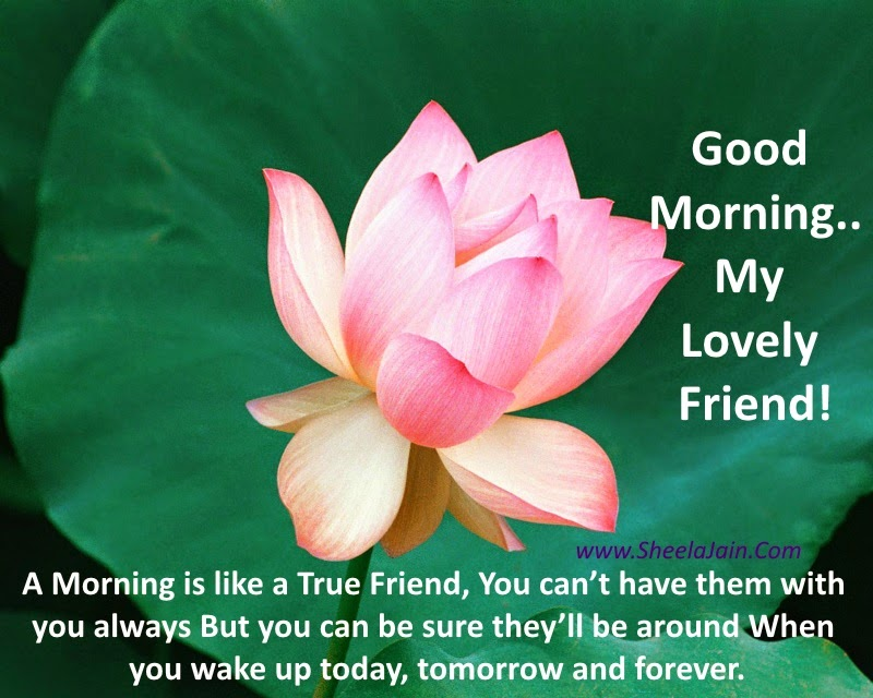 Funny Good Morning Quotes In Hindi For Friends The Mercedes Benz