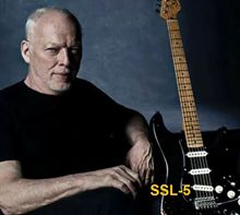 Pastillas de la Guitarra de David Gilmour Black Strat