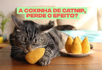 A coxinha de catnip, perde o efeito?