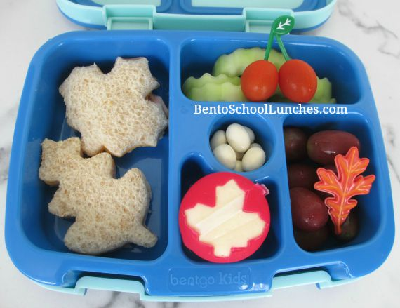 Fall leaves school lunch