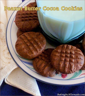 Peanut Butter Cocoa Cookies, 5 simple ingredients never tasted so good! | Recipe developed by www.BakingInATornado.com | #recipe #bake