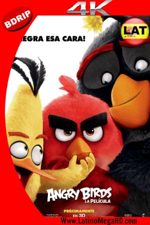 Angry Birds: La Película (2016) Latino Ultra HD 4K 2160P ()