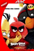 Angry Birds: La Película (2016) Latino Ultra HD 4K 2160P - 2016