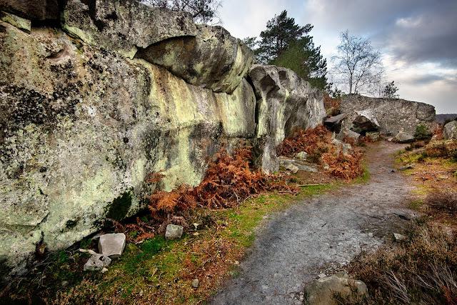 Sentier du Long Boyau, forêt de Fontainebleau