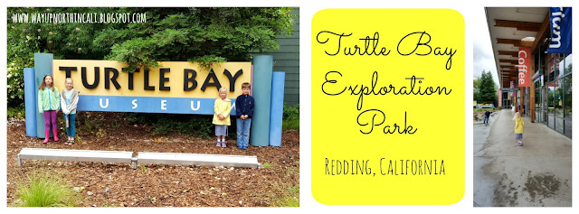A look at Turtle Bay Exploration Park through fresh eyes. www.wayupnorthincali.blogspot.com