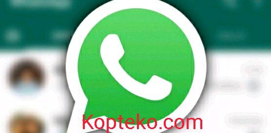 Cara Backup WhatsApp ke HP Lain